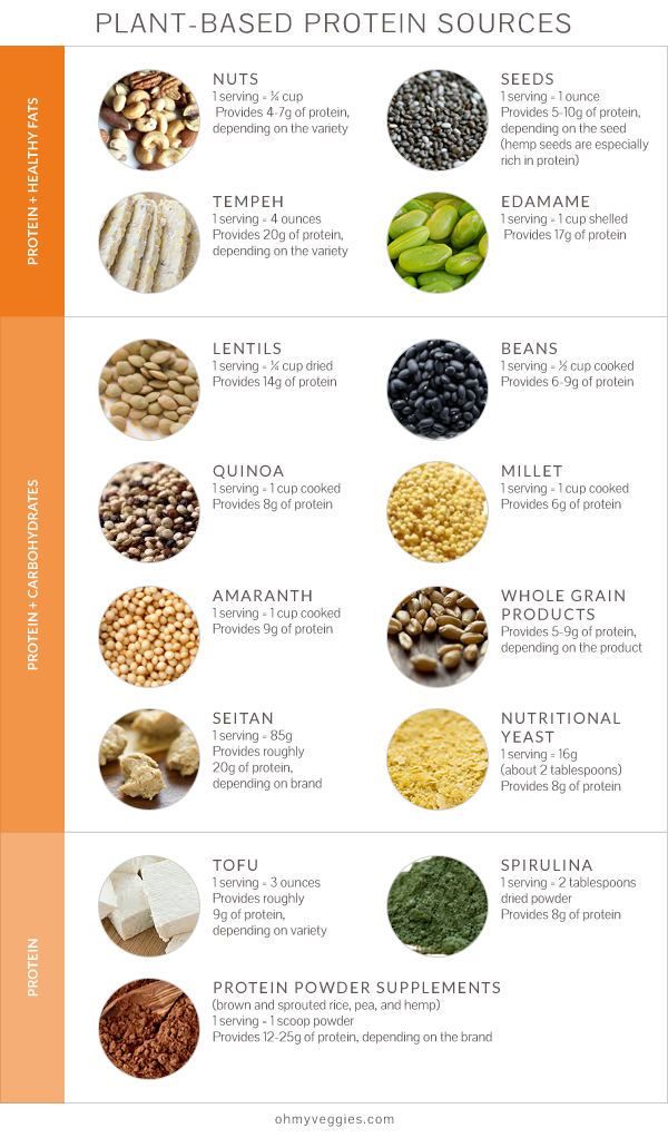 plant_based_protein_sources